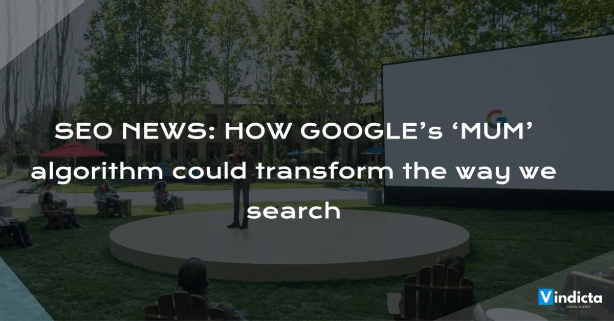 SEO-News-Google-Algorithm-Update-vindicta-digital
